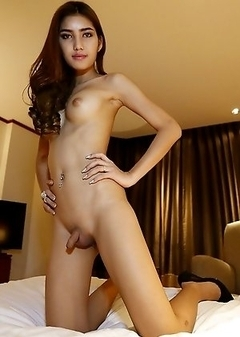 Free Asian Ladyboy Galleries